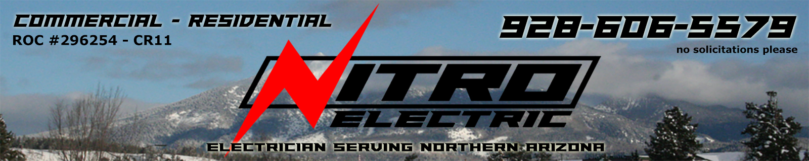 Nitro Electric website banner